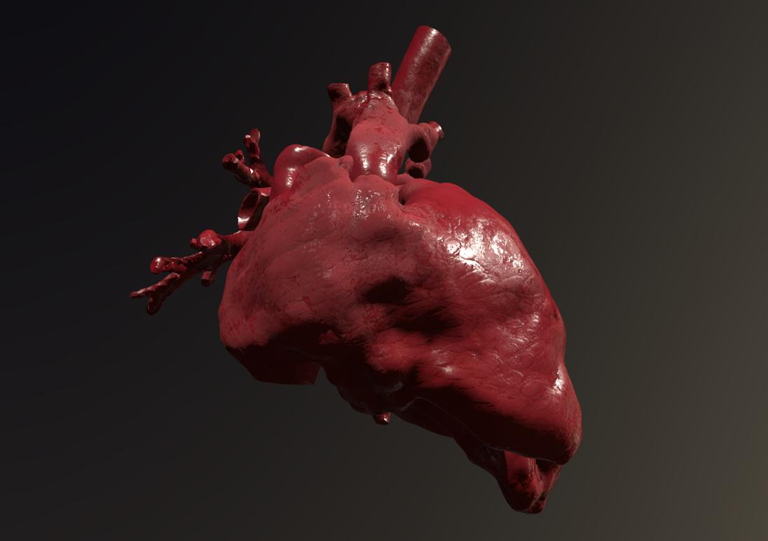 Modello 3D del cuore che abbiamo usato per la formazione in realtà aumentata