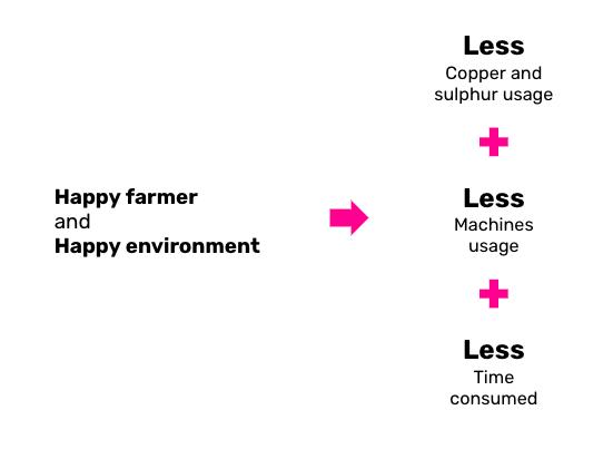 La ricetta per ambiente e viticoltori più felici: Computer Vision e Machine Learning per l'agricoltura