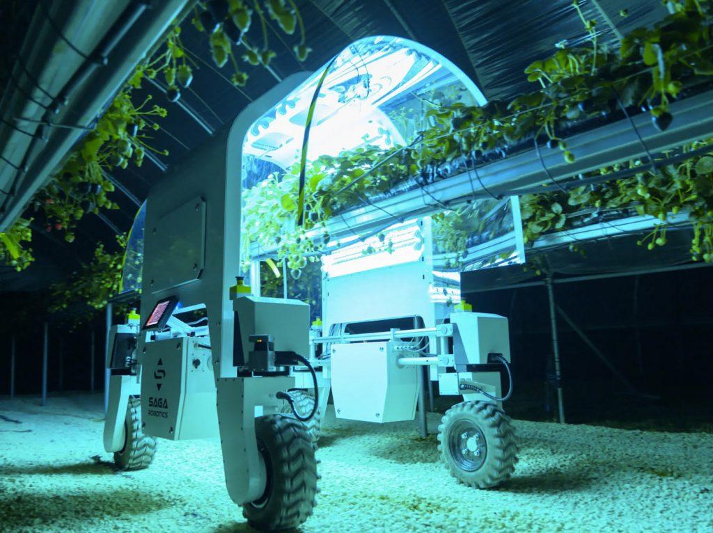Cover approfondimento su Computer Vision per l'Agricoltura con un robot che ispeziona le piante in una serra